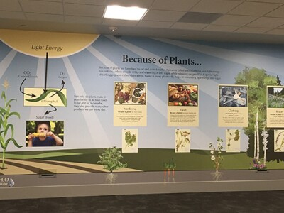 Because-of-Plants wall exhibit.jpg
