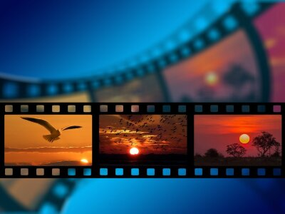 Image of film real with various nature pictures