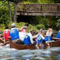 Two teams racing each other in canoes