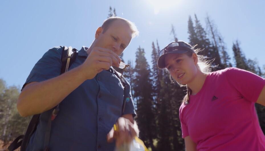Dragonfly research Seth/Alyssa