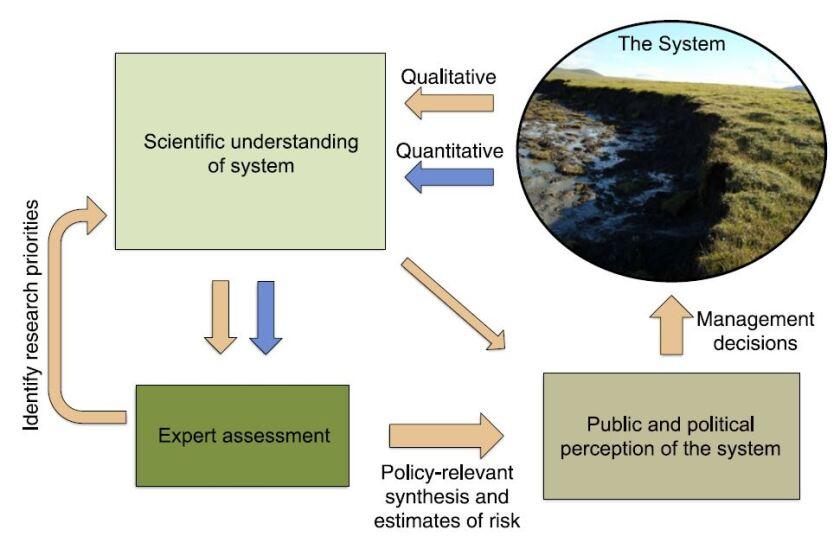expert assessment.JPG