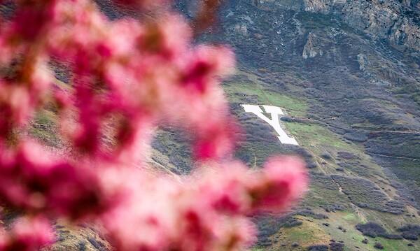 Y Mountain.jpg
