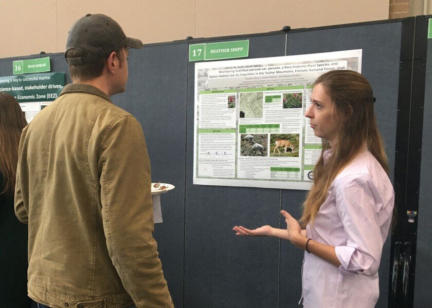Heather Ship presents on the effects of grazing on the Indian-paintbrush population.