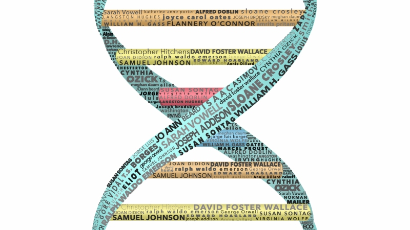 Essay Genome Project