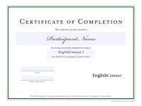 Participation Certificate Icon