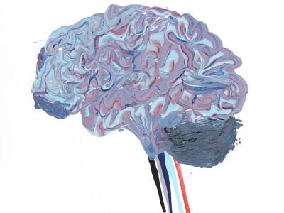 2019 Neuroscience Art Contest