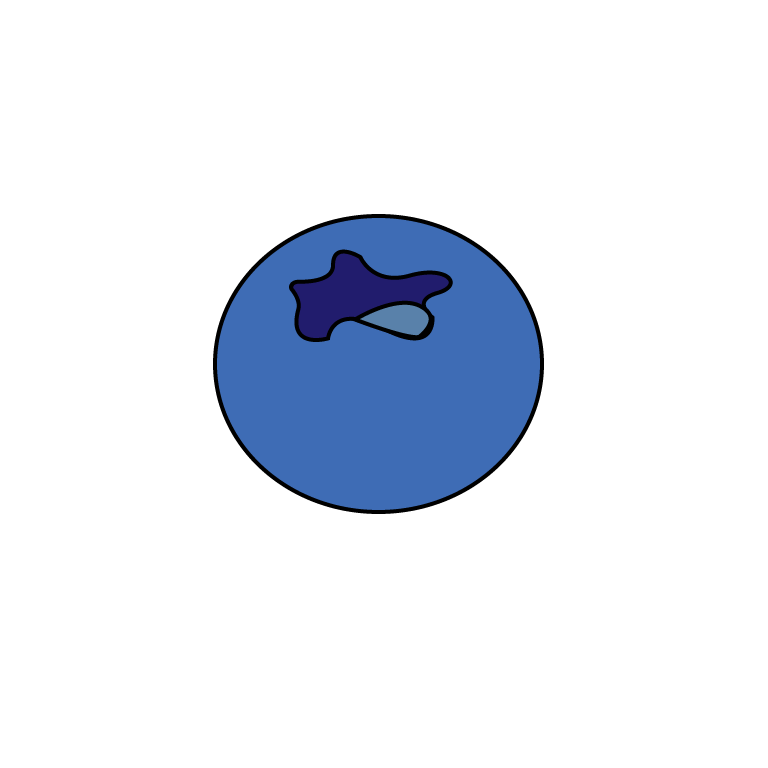 blueberry icon.png