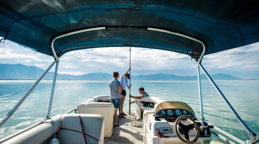 BYU researchers dig up ways to improve Utah Lake