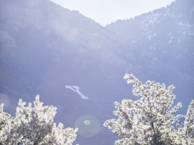 Image of Y mountain with Spring blooms