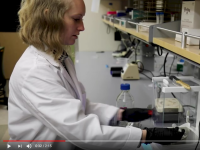 Ashlin was recently highlighted by the MMBIO department in a short video!