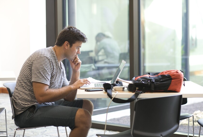 Photo of a male student studying on a laptop