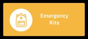 Emergency Kits Icon Button