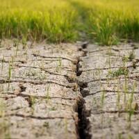 photo of dry, cracked soil