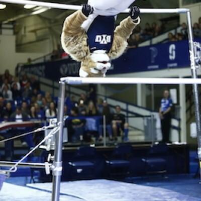 Cosmo Gymnastics 2017 4.jpg