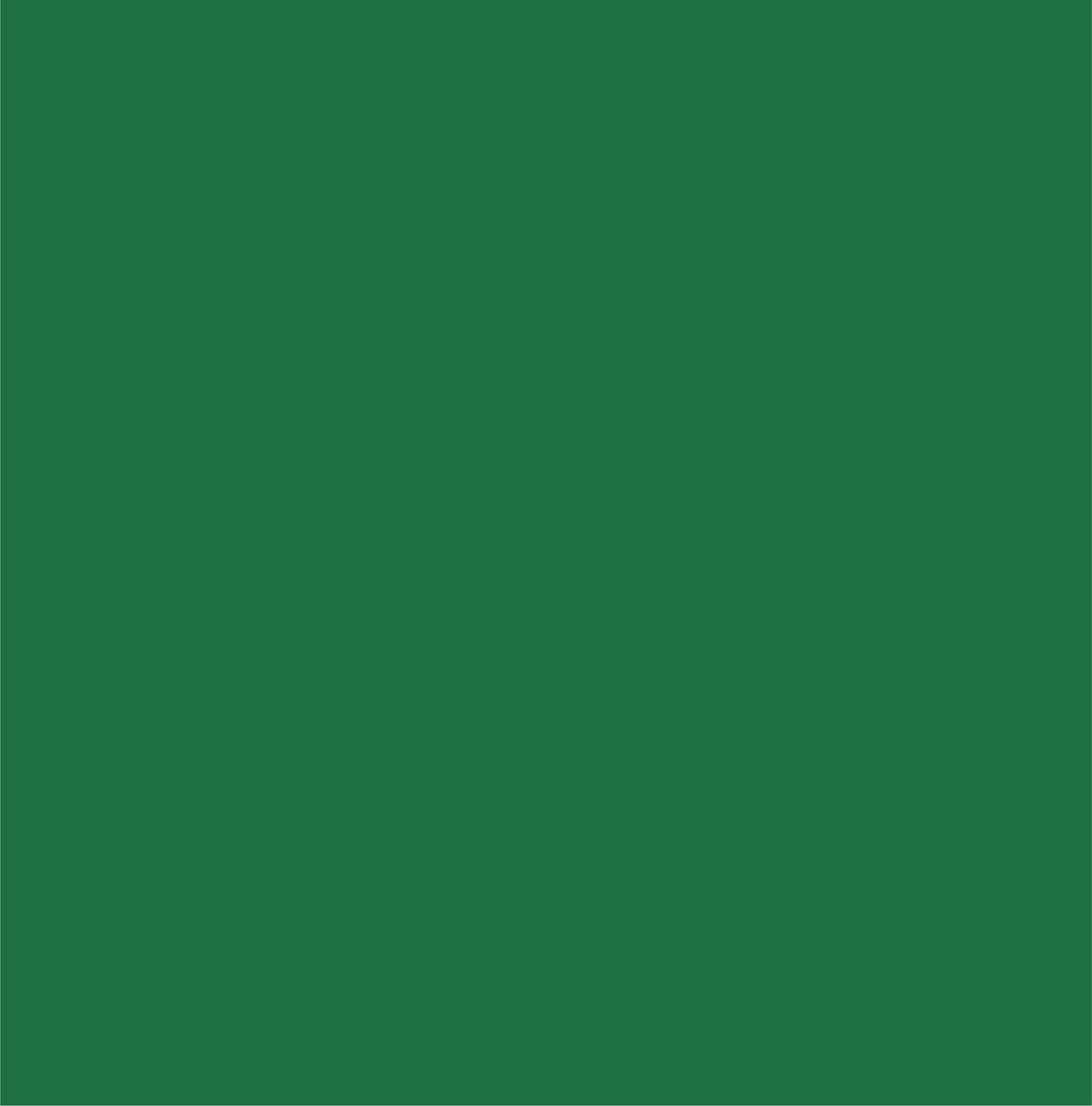 Sample of forest green, one of the accent colors.