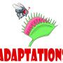 BYUCalendar_adaptations logo.png