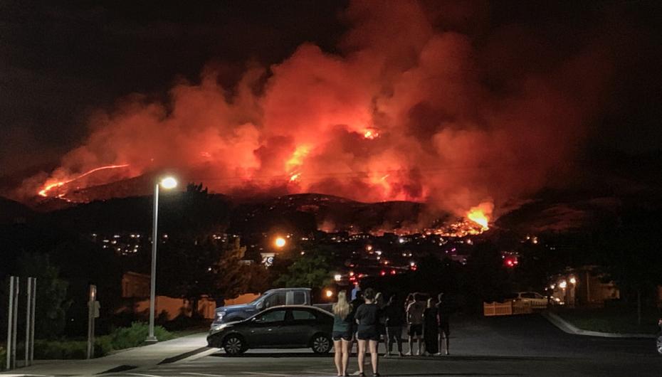 Fighting fire with seeds: BYU restoring scorched landscapes after devastating wildfires