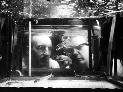 two men observing fish tank BW.jpg
