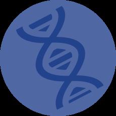 Molecular Biology Major