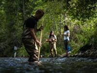 Biodiversity Monitoring