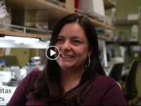 Claudia's Ph.D experience was recently highlighted by BYU Graduate Studies in a short video!