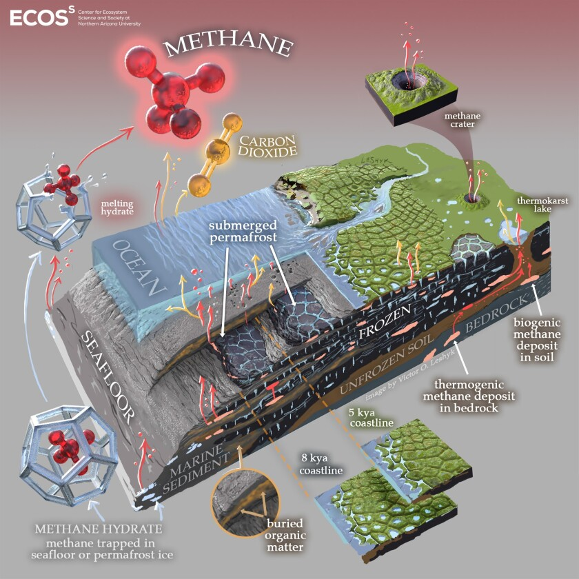 Artistic diagram of the subsea and coastal permafrost ecosystems, emphasizing greenhouse gas production and release.