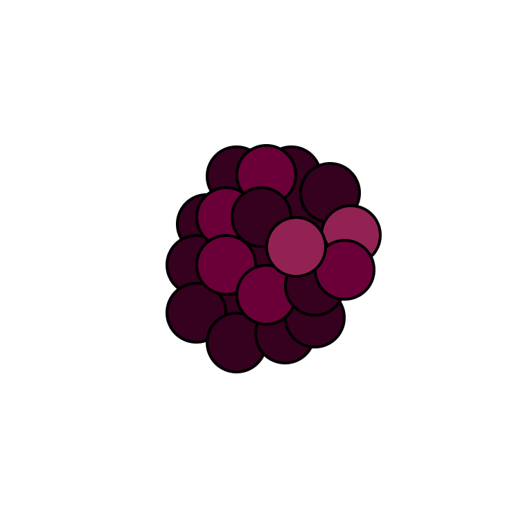 raspberry icon.png