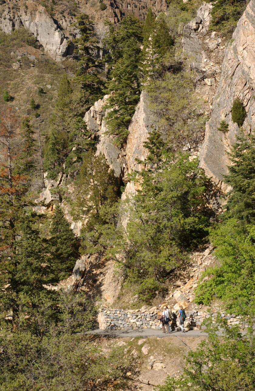 timpanogos-cave-diversity.jpg