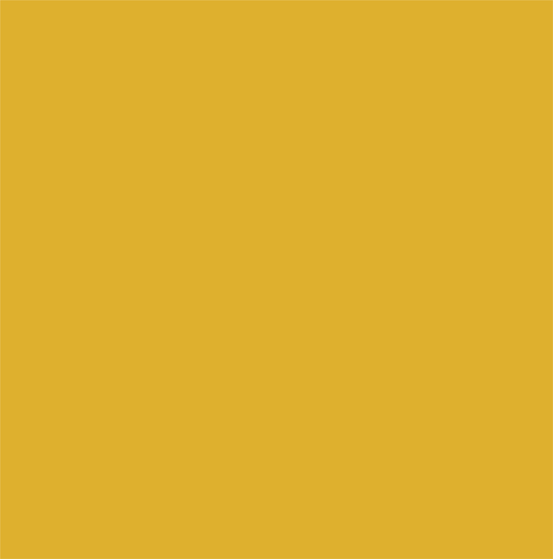 Yellow from the secondary color palette.