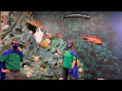 Conservation Kids PSA - Plastics