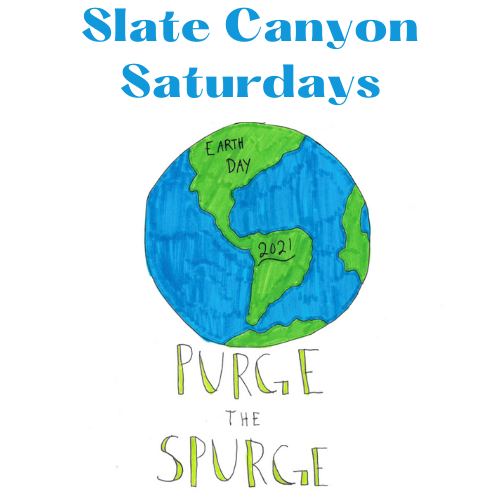 Slate Canyon Saturdays, Purge the Spurge