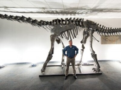 BYU professor in front of newly discovered dinosaur