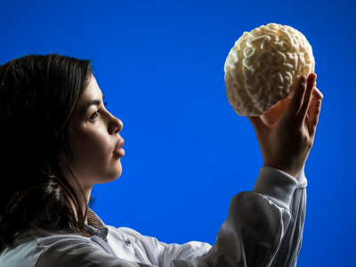 Researcher holding up a brain