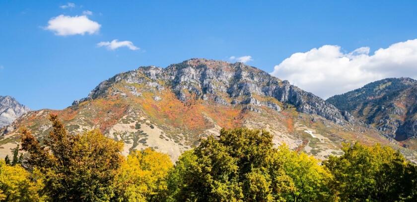 mountain_0.jpg