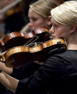 Violinists_300x365.jpg