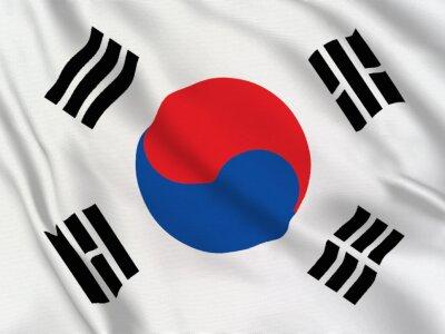 Asian Studies: Korea Studies (BA)