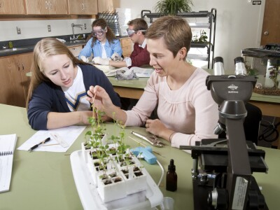 Students and teachers studying plants