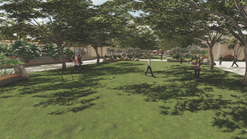 Graphic rendering of a greenfield lined with trees between buildings (Aloha Center and Cafeteria)