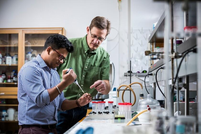 1704-12 Adam Woolley and Mukul Sonker- Lab 0015.JPG