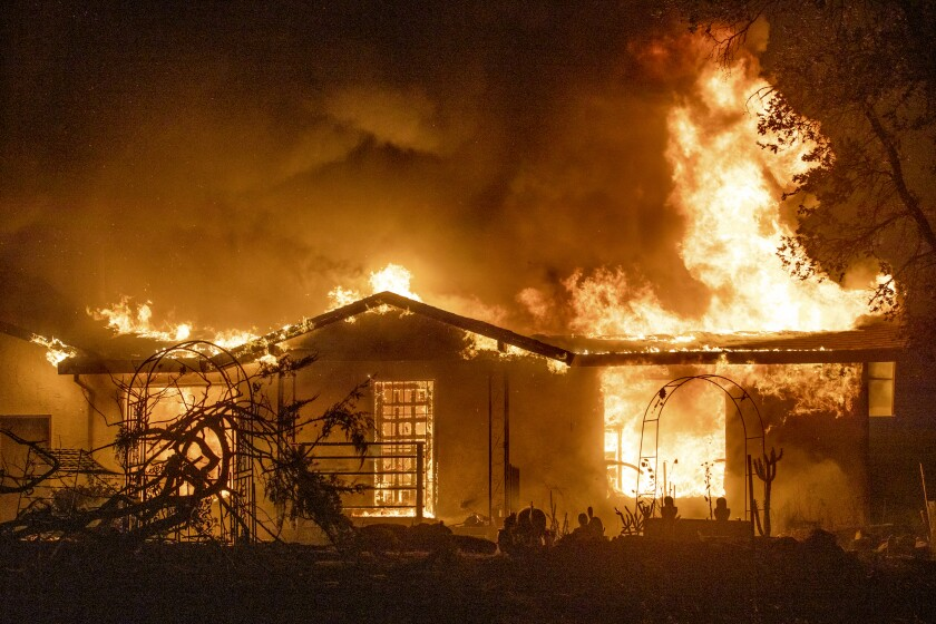 A house is on fire with dark outlines of plants and smoke around it.