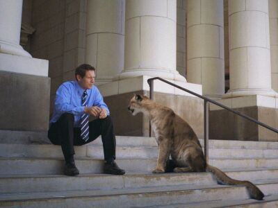 A real cougar hears from the greats how to be 'a real cougar'