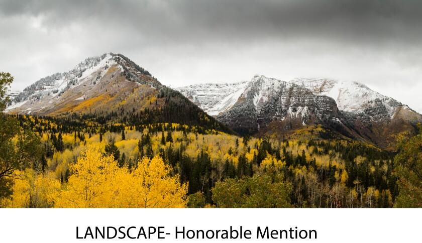 Landscape- Honorable Mention- Johnathan.jpg