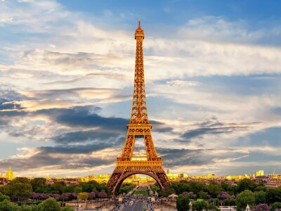 French Studies (BA)
