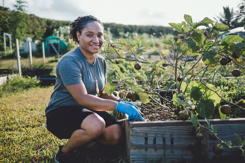 Cathy Ango working in the Sustainability Center garden.