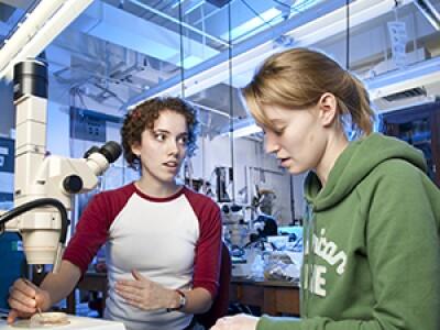 PDBio/scienceLab20Thumb.jpg